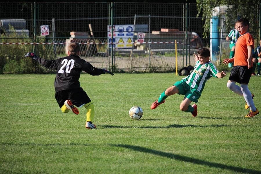 <p>Turnir se održao na ŠRC Čepin u Čepinu u subotu 18. lipnja 2016. godine. Turnir se igrao na 4 terena. Na turniru je nastupilo 28 ekipa u 2 kategorije sa cca 400 djece. U kategoriji 'početnici u-11' (za djecu 2005. godište i mlađi) ovo je bio sedmi turnir po redu te je na njemu nastupilo 16 ekipa podijeljenih u 4 grupe, dok je za kategoriju 'pretpočetnika u-10' ovo bio treći turnir u nizu (za djecu 2006. godište i mlađi), a na njemu je nastupilo 12 ekipa podijeljenih u 3 grupe.</p> <p><strong>Rezultati kod pretpočetnika:</strong> <br />u-10 (2006. i mlađi) <br />1. NK 'NAŠK' NAŠICE<br />2. NK ČEPIN <br />3. NK 'GRAFIČAR VODOVOD' OSIJEK</p> <p>Najbolji strijelac: Patrik Biber iz NK Grafičar Vodovod, Osijek<br />Najbolji igrač: Dino Oross iz NK Našk Našice<br />Najbolji vratar: Luka Đekić iz NK Čepin</p> <p><strong>Rezultati kod početnika, u-11 (2005. i mlađi)</strong><br />1. NK 'GRAFIČAR VODOVOD', OSIJEK<br />2. NK ČEPIN<br />3. NK SARVAŠ</p> <p>Najbolji strijelac: Bruno Živković, NK Sarvaš<br />Najbolji igrač: Leon Ambruš, NK Grafičar Vodovod, Osijek<br />Najbolji vratar: Tomislav Mioč, NK Čepin</p> <p style='text-align: center;'>{gallery}nogometni_turnir_2016_2{/gallery}</p>