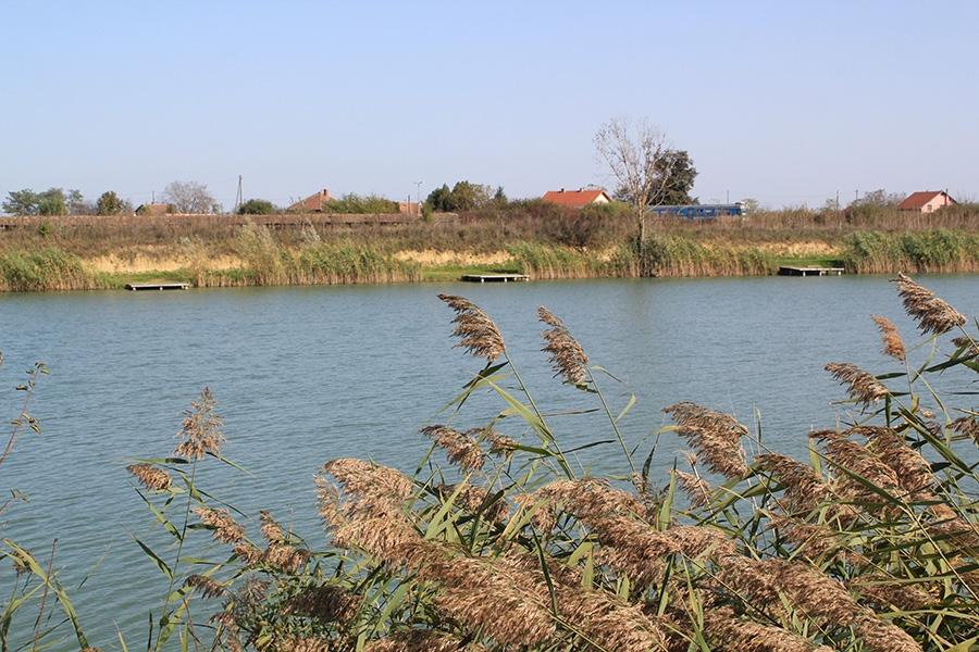 <p>ŠRD 'ČEPIN' iz Čepina osnovano je 05. veljače. 1995. godine u Čepinu na inicijativu nekoliko entuzijasta volontera u tijeku domovinskog rata. Iste godine sklopljen je ugovor s Opeka d.d. Osijek o korištenju jezera za promicanje i poticanje športskog ribolova u općini Čepin, Vladislavci, Vuka, Ivanovac.</p>