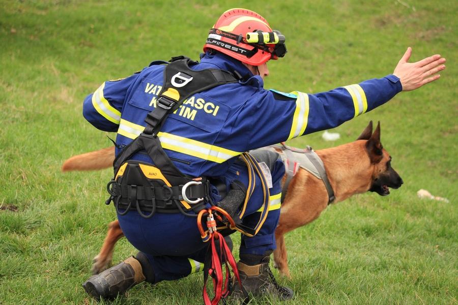 <p><em>Šire gradsko područje pogodio je razoran potres te ima nestalih osoba u ruševinama, a neke osobe su zbog nastale panike otrčale u nepoznatom smjeru. </em><em>Neki očevici tvrde da su čuli glasove u lokalnom šumskom predjelu. Tehničke ekipe su na mjestu događaja, a potrebna im je pomoć K-9 timova kako bi uspjeli locirati zatrpane osobe. Na mjesto događaja vatrogasci dolaze sa svojim potražnim psima kako bi pomogli u pronalasku nestalih osoba.</em></p>